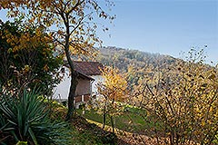 Italian Farmhouse for sale in Piemonte - Beautiful country home situated in a panoramic position  with vineyard views